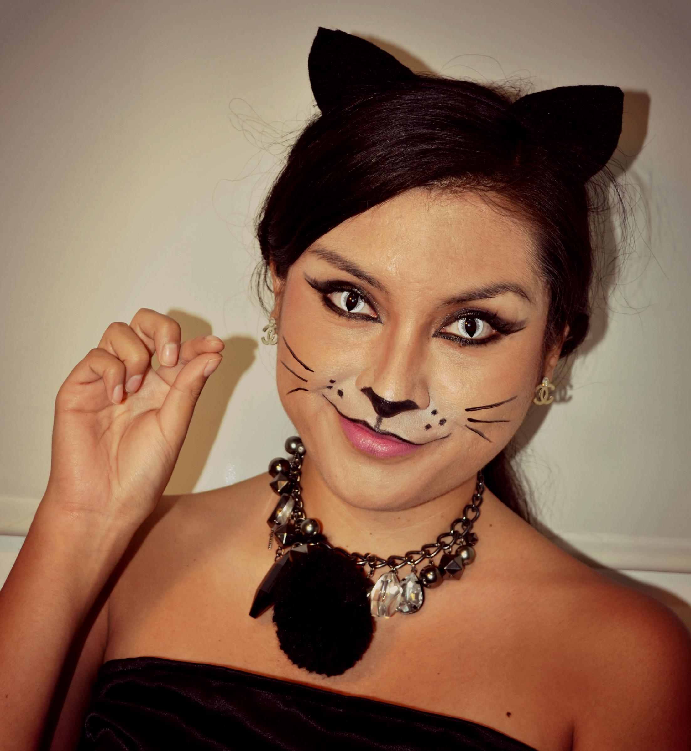 Как сделать кошачий макияж? Примеры. Пошаговая инструкция 47