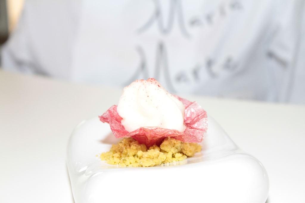 Flor-de-hibiscus-Maria-marte-duapara